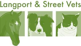 Langport logo