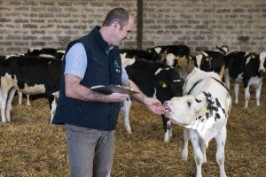 Safe Use of Veterinary Medicine Course @ Synergy Farm Health, Evershot